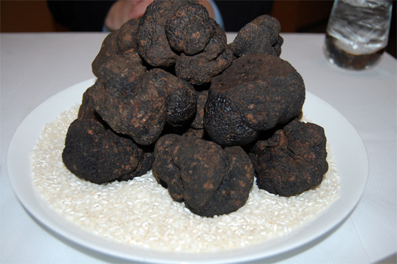 black summer truffles umbria